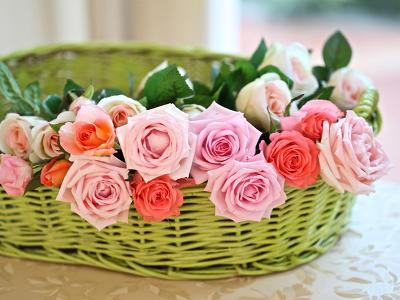Rózsás kényeztetés