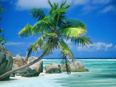 1316 napozástörténelem témához Seychelles-szigetek 1