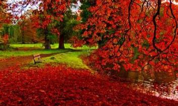 Őszi színek, és jelentéseik