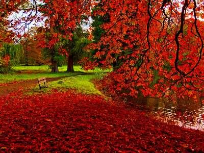 175403 őszi táj 201309