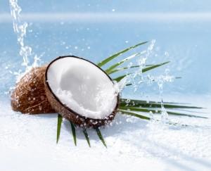másolat NIVEA_CoconutCream_Showergel_Ingredient_Visual