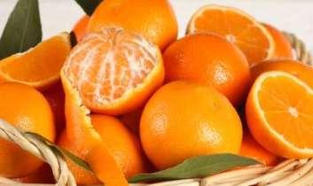 Vitamindús citrusok