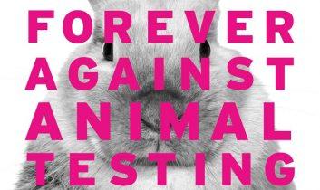 Örökké az állatkísérletek ellen!