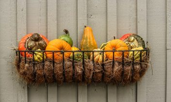 Vitaminban gazdag őszi feltöltődést és sütés-főzést!