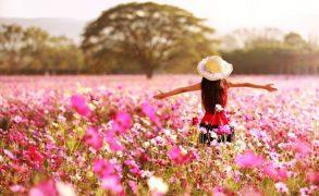 Egészségmegőrzés a növények gyógyító erejével